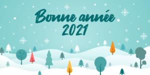 Read more about the article Bonne année 2021 !